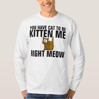 Funniest Funny Cat T-shirts, Got to be KITTEN ME T-Shirt