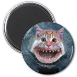 funny%20cat%20shark 2 inch round magnet