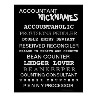 Funny Accountant Nicknames and Silly Job Titles Poster