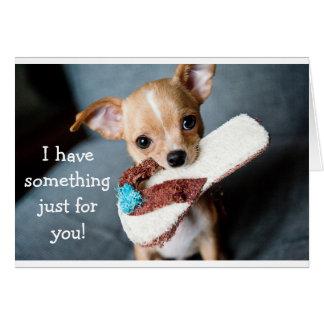 Funny adorable chihuahua dog birthday card