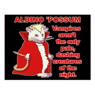 Funny Albino Possum Vampire Animal Postcard