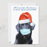 Funny All I Want For Christmas - Cute Dog Labrador Holiday Card