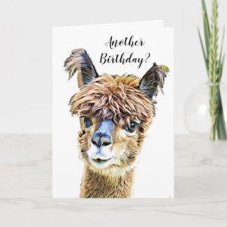 Funny Alpaca Llama Humor Birthday Card