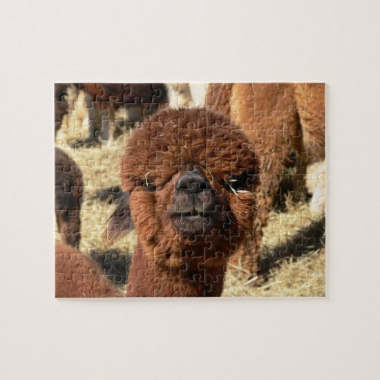 Funny Alpaca Puzzle Calendar Girl