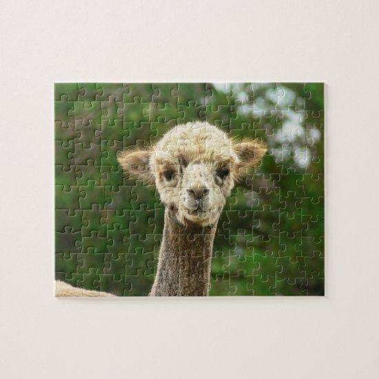 Funny Alpaca Puzzles