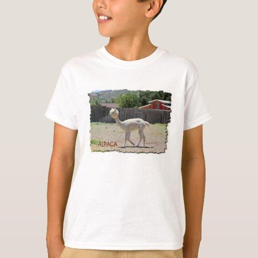 funny alpaca t shirt zazzle. Black Bedroom Furniture Sets. Home Design Ideas
