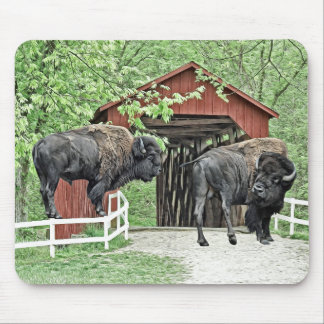 Funny American Bison At The Covered Bridge Mouse Pad
