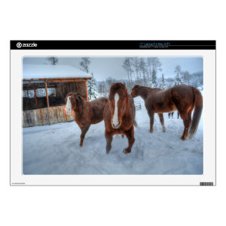 """Funny Amorous Stallion and Reluctant Mare Horses 17"""" Laptop Skins"""