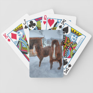Funny Amorous Stallion and Reluctant Mare Horses Bicycle Playing Cards