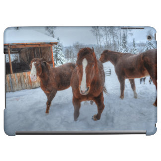 Funny Amorous Stallion and Reluctant Mare Horses iPad Air Cover