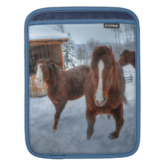 Funny Amorous Stallion and Reluctant Mare Horses iPad Sleeve