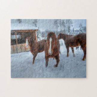 Funny Amorous Stallion and Reluctant Mare Horses Jigsaw Puzzle