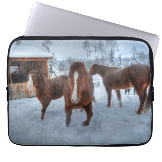 Funny Amorous Stallion and Reluctant Mare Horses Laptop Sleeve