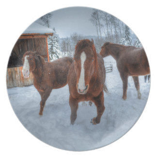 Funny Amorous Stallion and Reluctant Mare Horses Melamine Plate