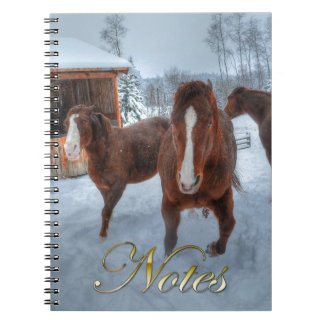 Funny Amorous Stallion and Reluctant Mare Horses Notebook