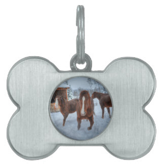 Funny Amorous Stallion and Reluctant Mare Horses Pet ID Tag