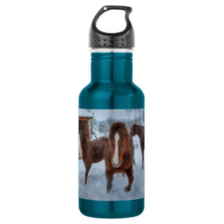 Funny Amorous Stallion and Reluctant Mare Horses Water Bottle