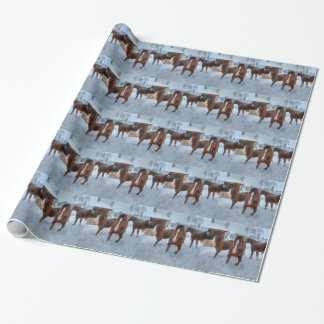 Funny Amorous Stallion and Reluctant Mare Horses Wrapping Paper