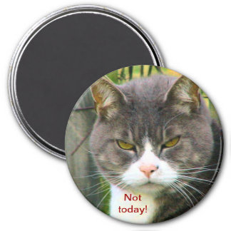 "Funny ANGRY CAT saying, ""NOT TODAY!"" 3 Inch Round Magnet"