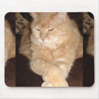 Funny Angry Lazy Fat Orange Cat Mouse Pad