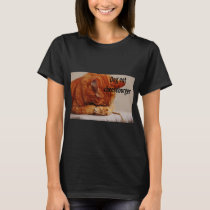 Funny Animal Memes Cat Memes Humorous Photos T-Shirt
