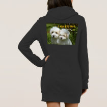 Funny animal memes Dog memes Humorous Photos Dress