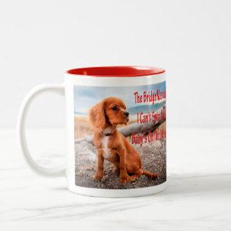 Funny animal memes Dog memes Humorous Photos Two-Tone Coffee Mug