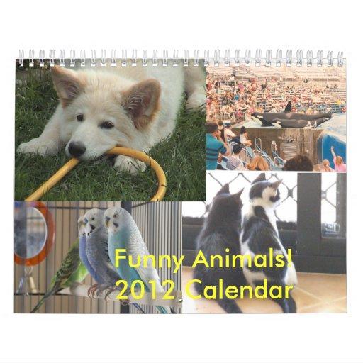Funny Animals 2012 Calendar