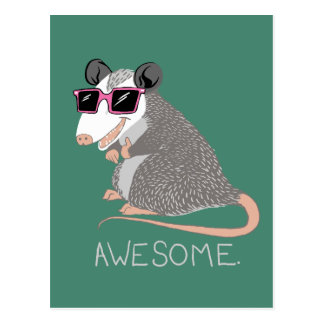 Funny Awesome Possum Postcard