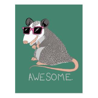 Funny Awesome Possum Postcard