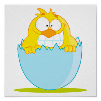 funny baby chick hatching from egg poster