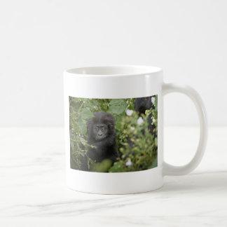 funny baby mountain gorilla, beringei beringei mug