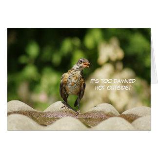 Funny Baby Robin in Bird Bath Heatwave Card