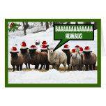 Funny Bah Humbug Greeting Cards