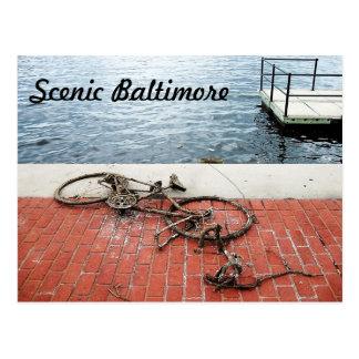 Funny Baltimore Scene Postcard