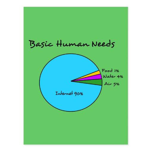 essay on basic human needs