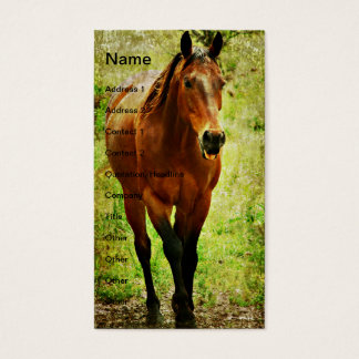 Funny Bay Horse Business Card