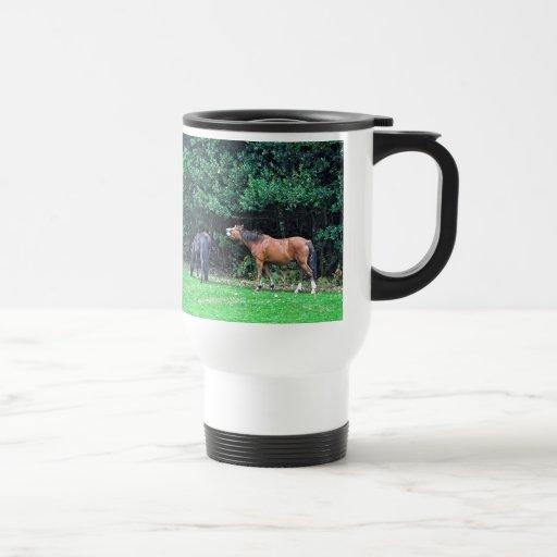 Funny Bay Pony Bad Attitude Horse Photo 15 Oz Stainless Steel Travel Mug