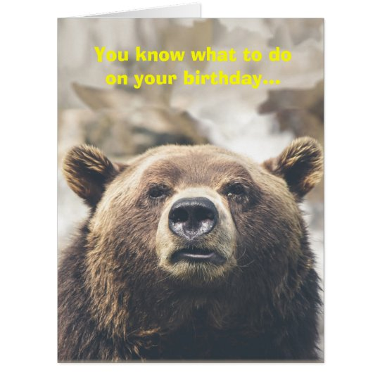 Funny Happy Birthday Greeting Teddy Bear Gifts | Dog Breeds Picture