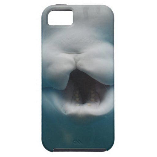 Funny Beluga Whale iPhone 5 Cover
