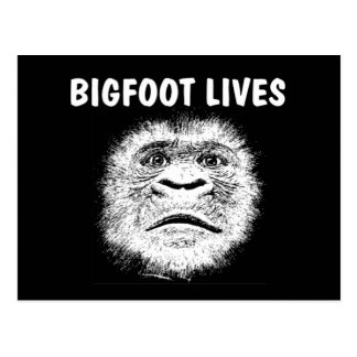 Funny Bigfoot Gifts Postcard