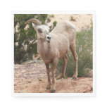 Funny Bighorn Sheep at Zion National Park Paper Napkin