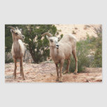 Funny Bighorn Sheep at Zion National Park Rectangular Sticker