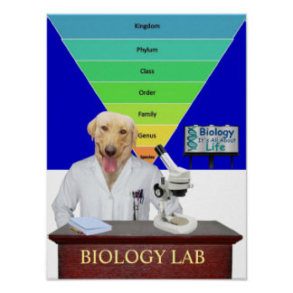 Funny Biology Lab Poster for Teachers