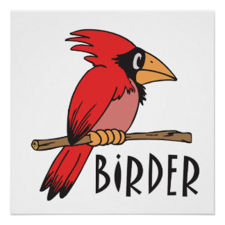 Funny Birding Birdwatcher Birder Poster