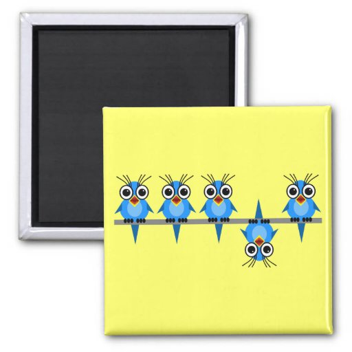 funny birds fridge magnets