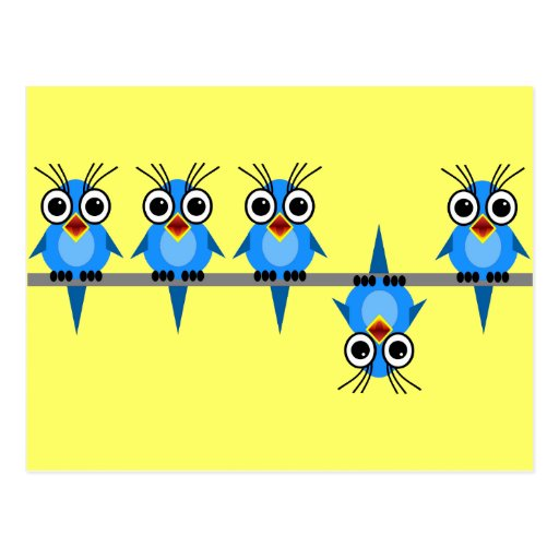 funny birds post cards