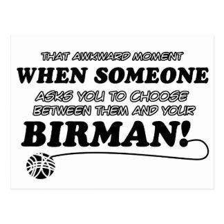 Funny birman designs postcard