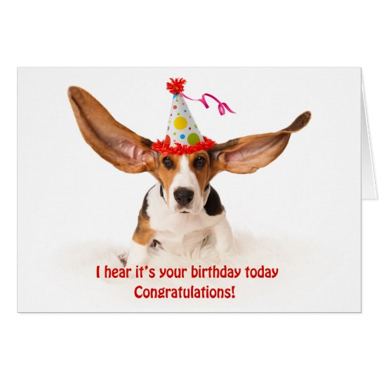 Funny birthday card basset hound hound dog with zazzle funny birthday card basset hound hound dog with bookmarktalkfo Gallery