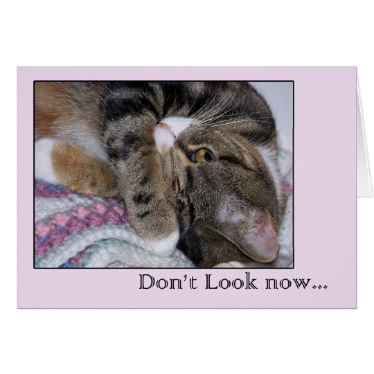Funny Birthday Card. Don't Look Now with Cat Card